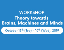 Workshop: Theory towards Brains, Machines and Minds